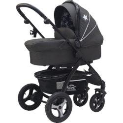 Детская коляска Rant Alaska 2 в 1 (черный)