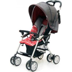 Прогулочная коляска Jetem Elegant (серый/красный)