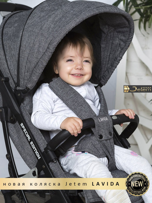 Прогулочная коляска  Jetem Lavida/серый (черная рама)